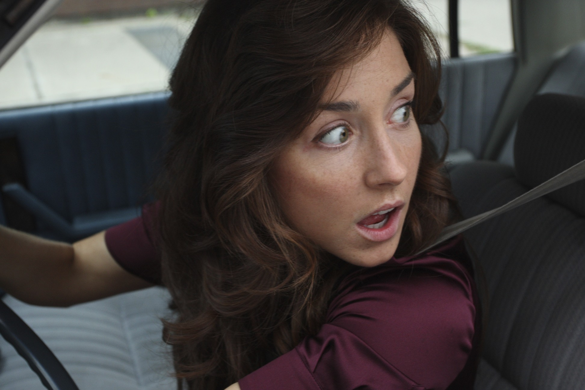 Being Erica, Wild Roses coming to CBC